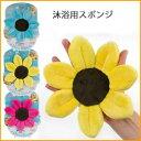 Blooming_sponge_main1