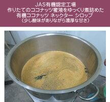 JAS有機認定オーガニックココナッツネクターシロップ