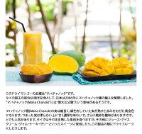 ドライマンゴー有機ドライマンゴー有機JASオーガニックマハチャノック無添加砂糖不使用タイ産無漂白