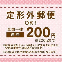 クリニークCLINIQUEフェイシャルソープマイルド100g【詰め替え用】