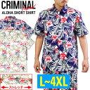 S-ss-criminal-1607-1