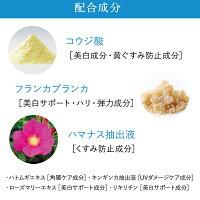 【公式】デルメッドホワイトニングクリーム