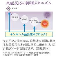 【公式】デルメッドインナープロテクトジェル