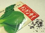ちんげんさい春蒔き種子 チンゲンサイ 3mL 小袋詰