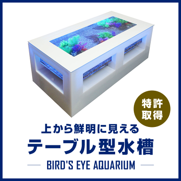 バーズアイ水槽 テーブル型水槽 水槽 テーブル 水槽セット 熱帯魚 インテリア オーバーフロー水槽 店舗什器 魚 アクアリウム 金魚 <レクタングラテーブル ホワイト BEA-SQU-1206-W>
