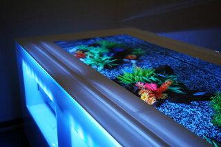 バーズアイ水槽テーブル型水槽水槽テーブル水槽セット熱帯魚インテリアオーバーフロー水槽店舗什器魚アクアリウム金魚