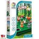 SMRT Games ジャンプイン! パズル Jump in' SG421JP ドリームブロッサム 7才から