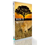 GRANIMAGEK654海老原豊・風のアフリカ4
