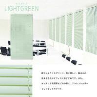 カラー:ライトグリーン