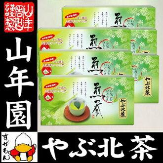 日本茶茶葉茶灌木北茶包 5 g × 20 × 6 件設置三角包茶袋煎茶茶茶葉煎茶茶葉日本茶煎茶茶葉綠茶禮品禮品茶,到 2015 年在節日禮物 60 生日慶祝男性女性母親禮品紀念品紀念品 02P19Dec15
