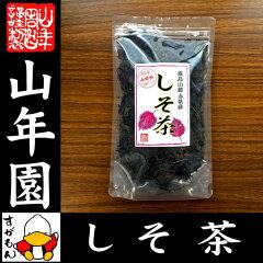 【国産 100%】しそ茶 赤しそ茶 30g 無農薬 ノンカフェイン 宮崎県産 送料無料 しそ緑…