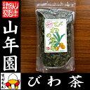 【国産 100%】びわ茶 びわの葉茶 100g 無農薬 ノン...