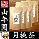 【国産 100%】月桃茶 2g×20パック×6袋セット ティーパック ノンカフェイン 沖縄県産 無農