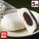 薩摩銘菓 かるかん饅頭(5個入)【送料無料】 贈り物 お土産 敬老の日 その1