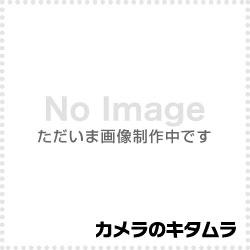 ニコン ソフトケース SS-DC1 《2013年1月下旬登場》