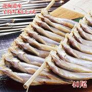 送料無料【北海道産】本ししゃも(メス)40尾】北海道でしか水揚げされない本ししゃもです。カラフトししゃも(カペリン)とは異なる格別の美味しさ【瞬間冷凍で鮮度保証】