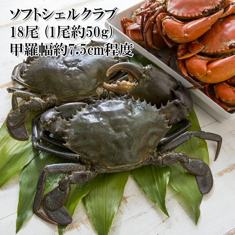 魚介類・水産加工品, カニ  50g 18