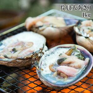 (片貝大あさり 1kg) 活ものの大あさり(ウチムラサキ貝)を使用し、鮮度の良いままに生冷凍(冷凍)