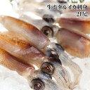 ホタルイカ 刺身