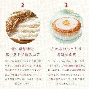 akaneiroのレモンケーキ詳細レモンケーキver