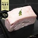 牛脂 ピンク 和牛 A5等級 未精製 「 佐賀牛 牛脂 ケン