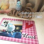 【 ペット 名入れ 写真入れ 無料 愛鳥 マウスパッド】マウスパッド デスク 仕事 インコ 鳥用品 鳥グッズ 鳥雑貨 ギフト プレゼント