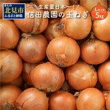 【ふるさと納税】日本一の玉ねぎ生産地!信田農園の玉ねぎ 5kg(Lサイズ)【2021年9月上旬から順次発送】