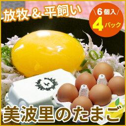 【ふるさと納税】[北海道根室産]美波里ナチュラル卵6個×4P A-07024