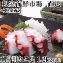 【ふるさと納税】【北海道根室産】刺身用たこ足1本(1.2kg以上) A-11034