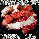 【ふるさと納税】 焼き・蒸しカニ 花咲カニ1.5kg A-14135
