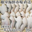 [北海道根室産]根室海鮮市場<直送>一夜干し浅羽かれい20枚 A-28059