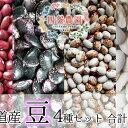 【ふるさと納税】四釜農園のオススメお豆4種セット≪各300g