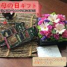 【ふるさと納税】【母の日までにお届け】母の日ギフト「生花アレンジメント」と和菓子セットフラワー