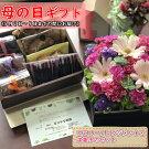 【ふるさと納税】【母の日までにお届け】母の日ギフト「生花アレンジメント」と洋菓子セットフラワー