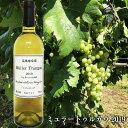 【ふるさと納税】高橋葡萄園 ミュラートゥルガウ2019 日本ワイン 750ml×1本