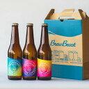 【ふるさと納税】花巻産クラフトビールおまかせ3種セット(330ml×3本)BrewBeast Brewery
