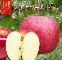 【ふるさと納税】中野果樹園のジョナゴールド5kg(16〜20個入り)