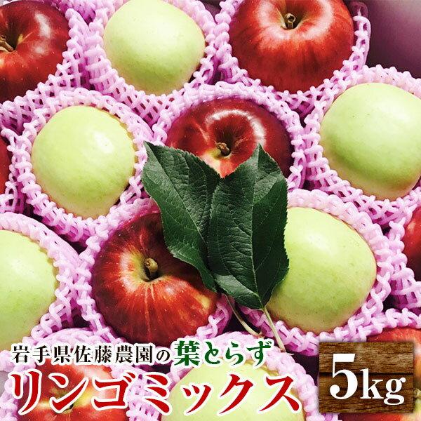 【ふるさと納税】佐藤農園の葉とらずリンゴ ミックス(王林/サンふじ) 5kg