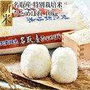 【ふるさと納税】【 令和2年度産米 】 名取産 特別栽培米 ひとめぼれ 20kg(5kg×4)