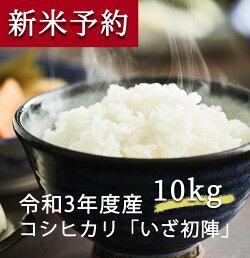 【ふるさと納税】宮城県丸森町産コシヒカリ10kg送料無料
