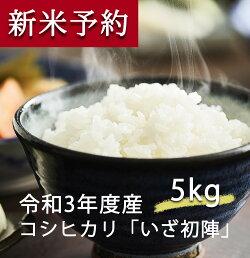 【ふるさと納税】宮城県丸森町産コシヒカリ5kg送料無料