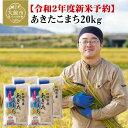 【ふるさと納税】120P9002 【令和2年産新米予約】秋田
