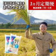 【ふるさと納税】360P9202【定期便6ヶ月】あきたこまち無洗米10kg(4〜9月配送)