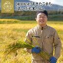 【ふるさと納税】40P9001 秋田県特別栽培米あきたこまち...