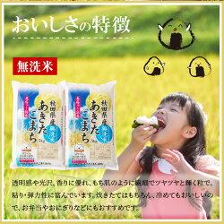 【ふるさと納税】60P9201 秋田県産あきたこまち(無洗米)10kg 画像2