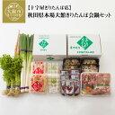 【ふるさと納税】300P1503 秋田県本場大館きりたんぽ会鍋セット 1