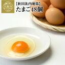 【ふるさと納税】秋田比内地鶏たまご48個 6個入×8パック ブランド鶏 玉子 鶏卵 朝食 卵かけごはん お菓子作り 40P5303