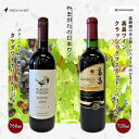 【ふるさと納税】やまがたの日本ワイン「タケダワイナリー」と「高畠ワイン」 F2Y-1778
