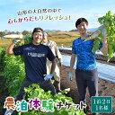 【ふるさと納税】農家のお宿に泊まって農山村を楽しむ!共通農泊体験チケット