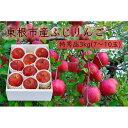 【ふるさと納税】【山形県東根市産】ふじりんご特秀品3kg F2Y-9458